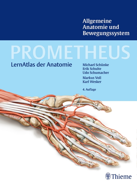 PROMETHEUS Allgemeine Anatomie und Bewegungssystem von Michael ...