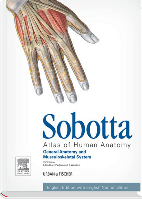 Ebook Atlas Of Human Anatomy Vol1 15th Ed Von Friedrich Paulsen