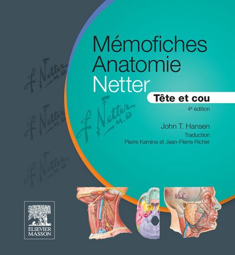 Prometheus Allgemeine Anatomie Bewegungssystem Pdf