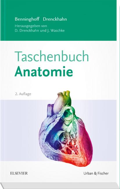 Benninghoff Taschenbuch Anatomie von Detlev Drenckhahn | ISBN 978-3 ...