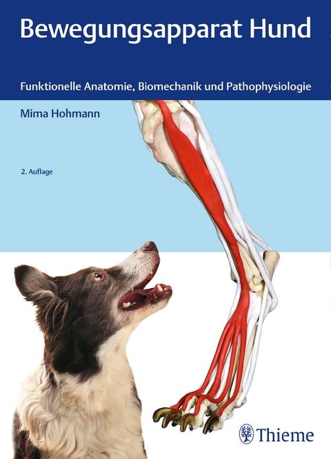 Bewegungsapparat Hund von Mima Hohmann | ISBN 978-3-13-241812-7 ...