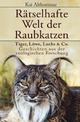 Rätselhafte Welt der Raubkatzen - Kai Althoetmar