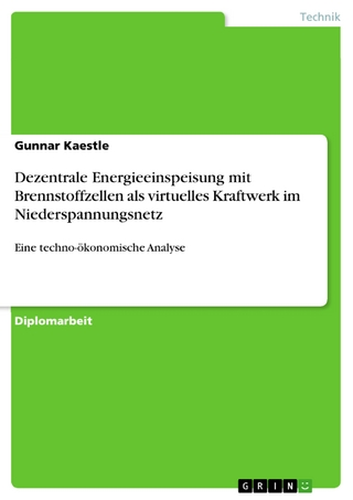 Dezentrale Energieeinspeisung mit Brennstoffzellen als virtuelles Kraftwerk im Niederspannungsnetz - Gunnar Kaestle