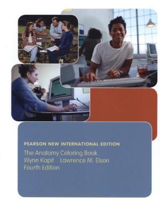 Anatomy Coloring Book: Pearson New International Edition (eBook)