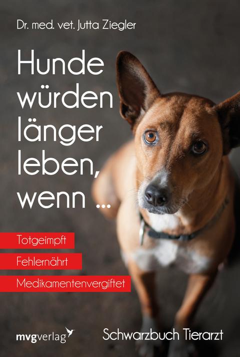 Hundekauf Privat Beachten