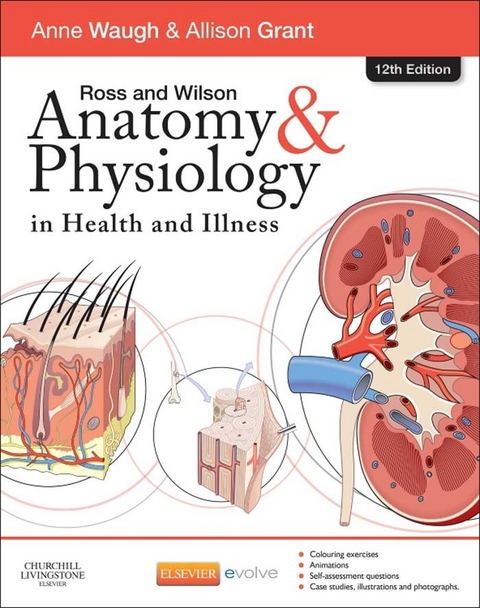 eBook: Ross & Wilson Anatomy and Physiology in Health and… von Anne ...