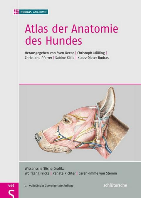 eBook: Atlas der Anatomie des Hundes von BUDRAS ANATOMIE | ISBN 978 ...