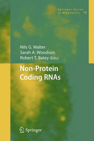 Non-Protein Coding RNAs - Nils Walter; Sarah A. Woodson; Robert T. Batey