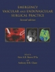 Emergency Vascular and Endovascular Surgical Practice Second Edition